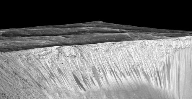 Terrestrial life unlikely to contaminate Mars: Study #83826